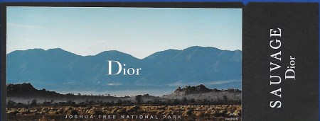 dior-3