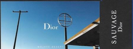 dior-4